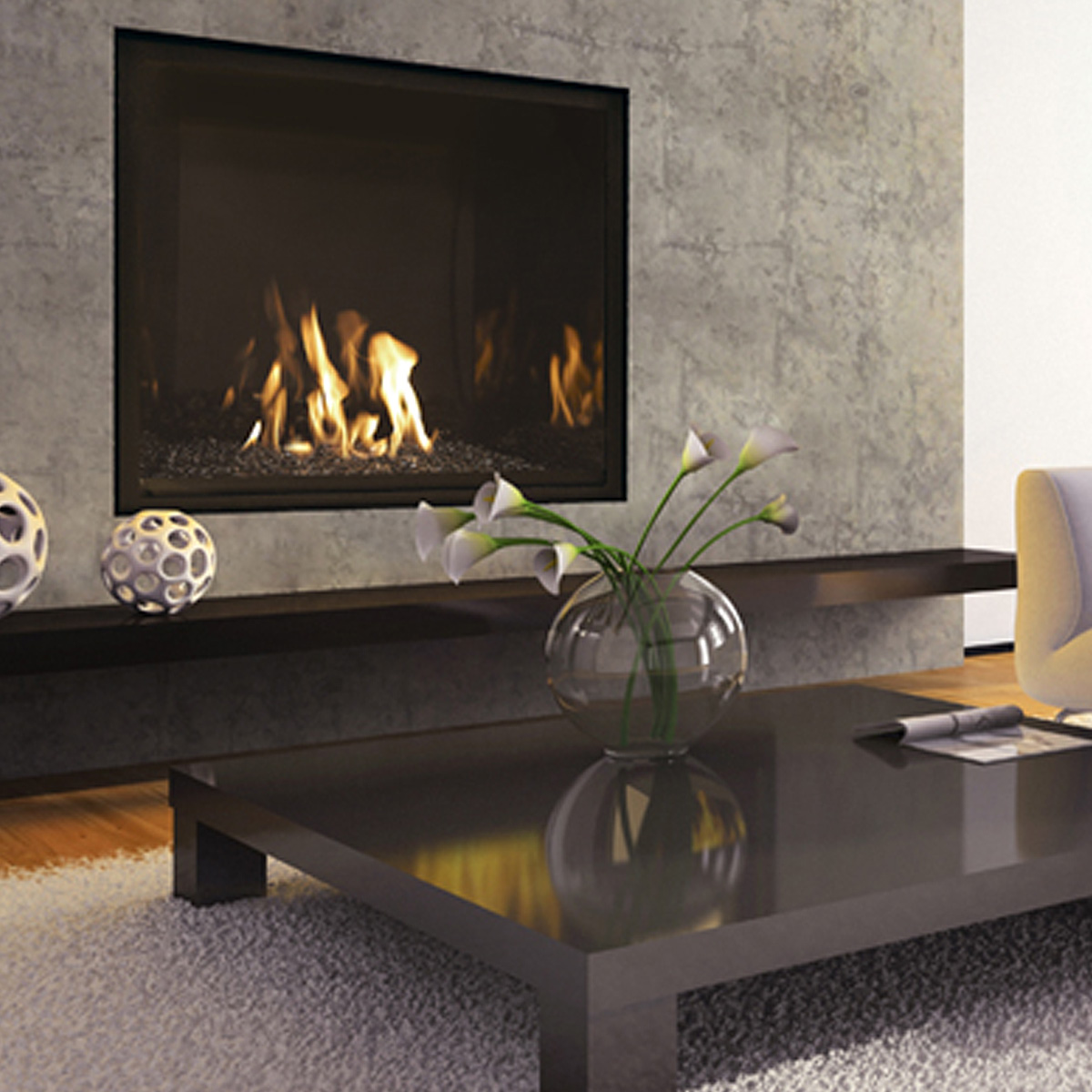 Mendota Fullview Fireplace Product Image